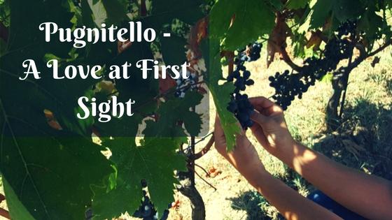 Pugnitello - A Love at First Sight