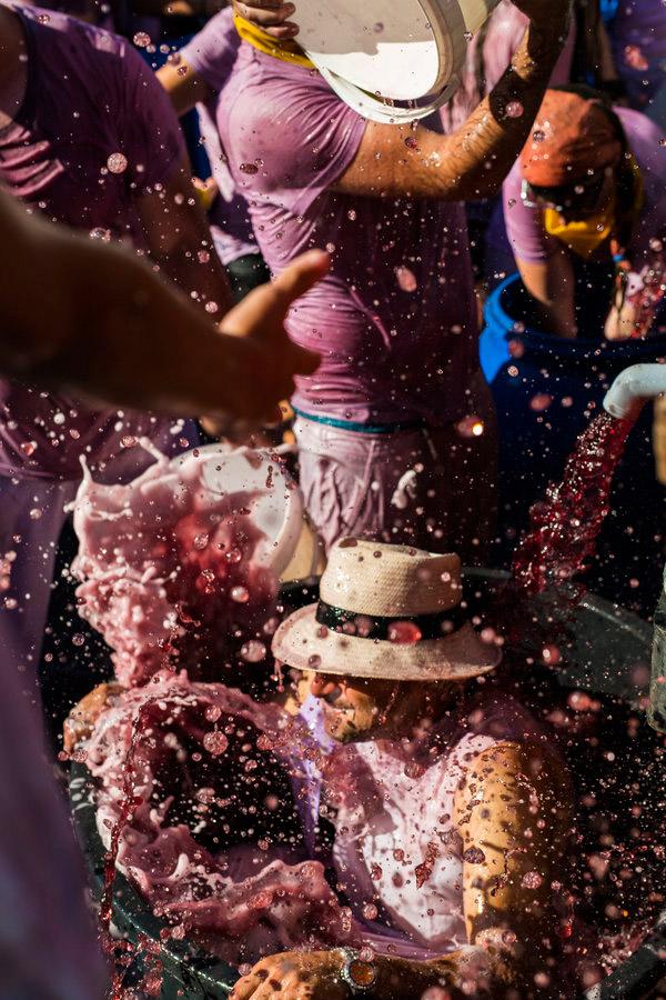 Red Wine Battle in Spain