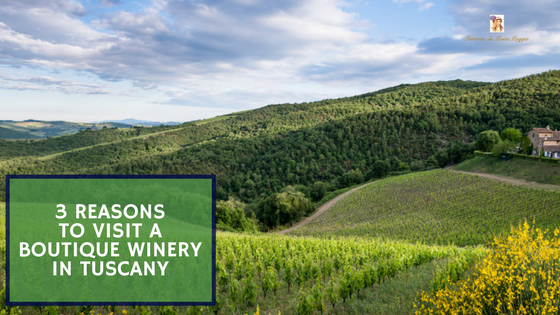 3 Reasons To Visit A Boutique Winery In Tuscany