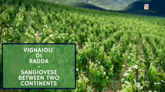 Vignaioli di Radda - Sangiovese Between Two Continents