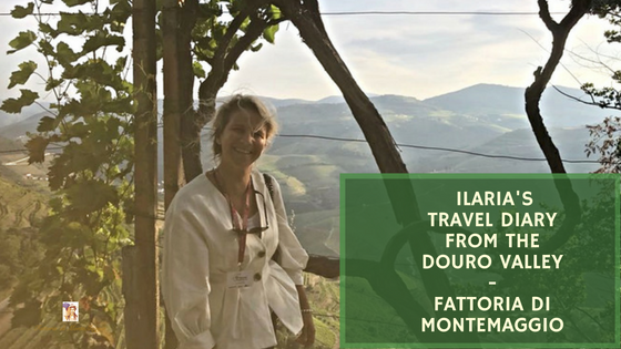 Ilaria's Travel Diary from the Douro Valley