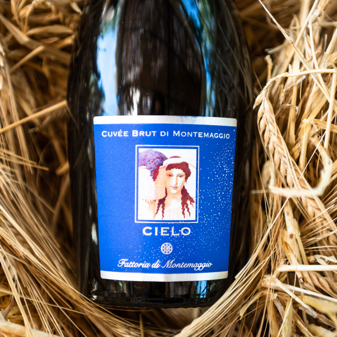Buy a sparkling organic wine made with organic chardonnay grapes